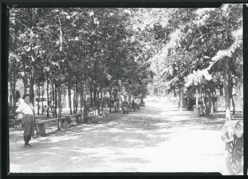 Fort Collins Campground 1925