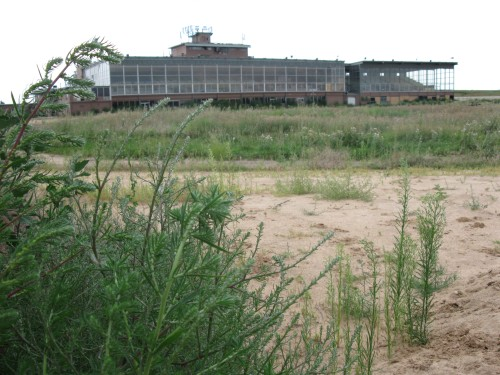 Overgrown racetrack with glassed in grandstand