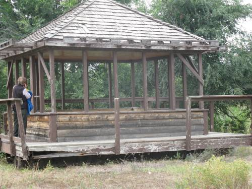 West White Pine, 2009